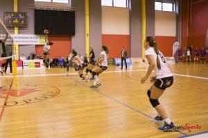 volley-ball : ALMVB vs harnes 0053 - leandre leber-gazettesports