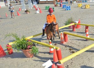 2013-07-12-equifun-lamotte-photo-red