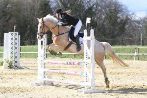 parcours equitation