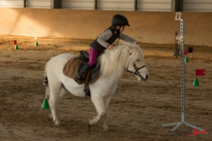 equifun-poney-club-amiens-vendredi-11-novembre-2016-apres-midi-reynald-valeron-36