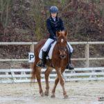 Equitation Pca (reynald Valleron (3)
