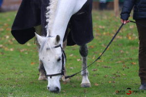 Equitation Pca (reynald Valleron (59)
