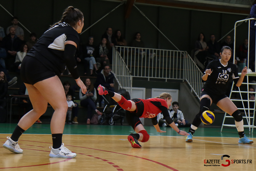 Volleyball Lamv Vs Vc Saint Polois (reynald Valleron) (11)