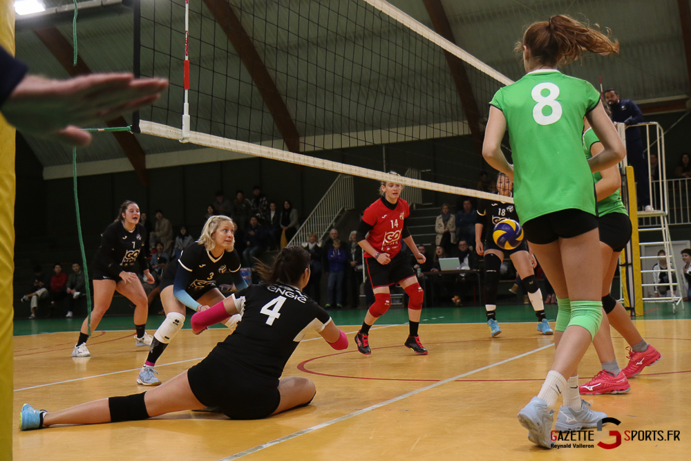 Volleyball Lamv Vs Vc Saint Polois (reynald Valleron) (14)