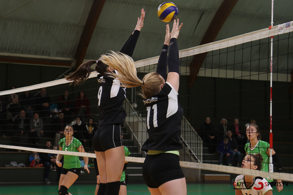 Volleyball Lamv Vs Vc Saint Polois (reynald Valleron) (20)