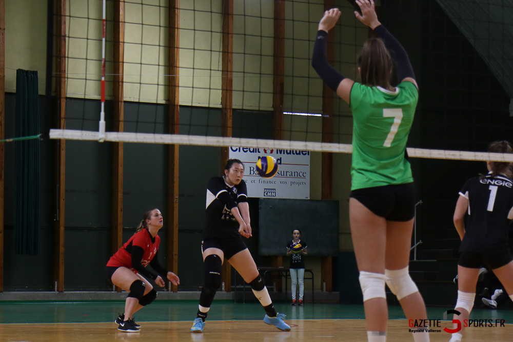 Volleyball Lamv Vs Vc Saint Polois (reynald Valleron) (26)