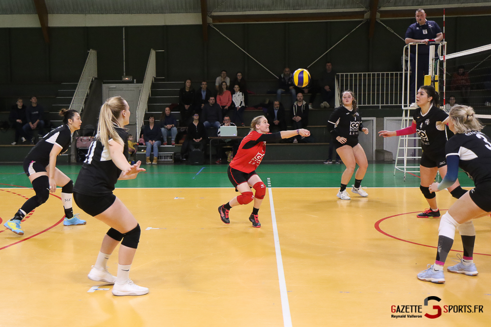Volleyball Lamvb (f) Vs Acbb (reynald Valleron) (49)
