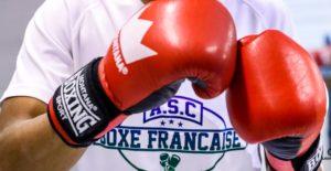 Boxe Francaise Asc Theonne Et Mohamed Oudji Etouvie 15 Leandre Leber Gazettesports