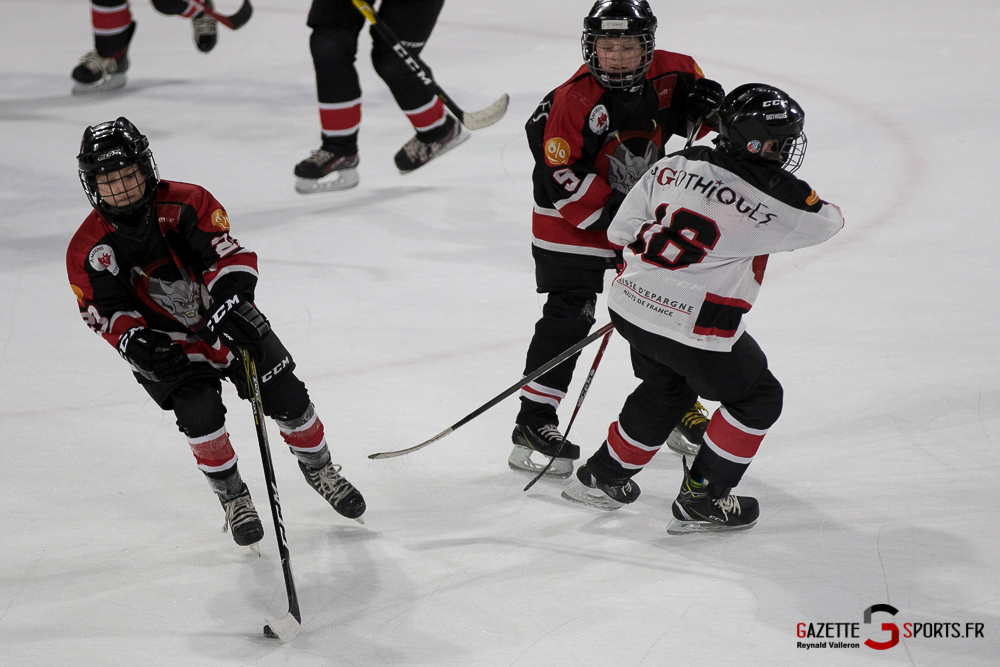 Hockey Sur Glace Mini Legendes (reynald Valleron) (13)