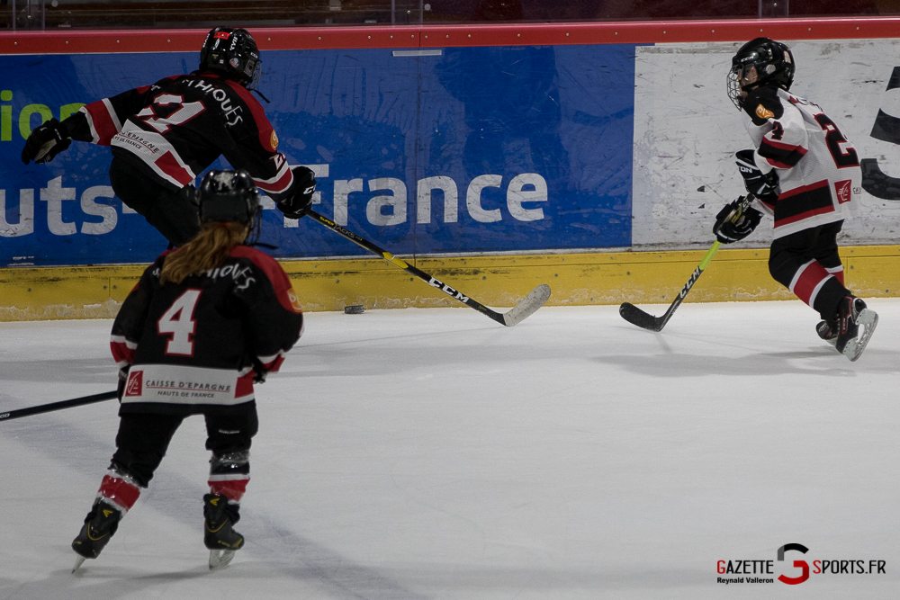 Hockey Sur Glace Mini Legendes (reynald Valleron) (19)