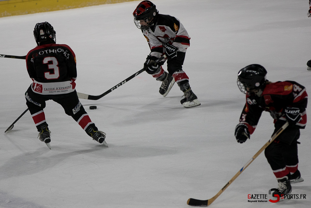 Hockey Sur Glace Mini Legendes (reynald Valleron) (27)