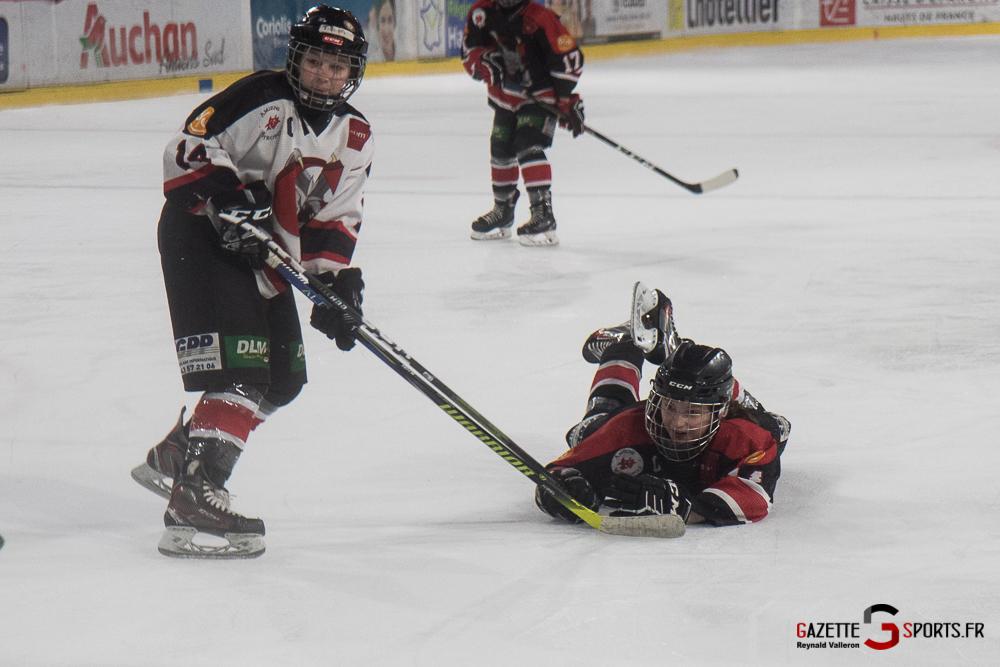 Hockey Sur Glace Mini Legendes (reynald Valleron) (33)
