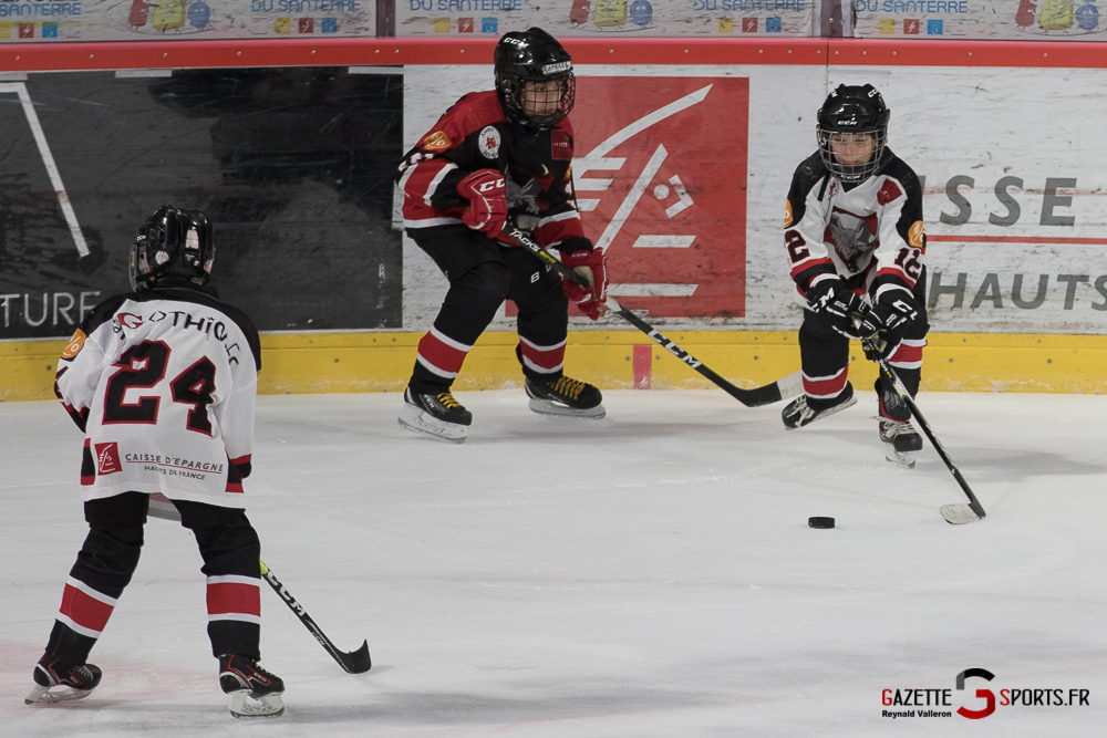 Hockey Sur Glace Mini Legendes (reynald Valleron) (8)