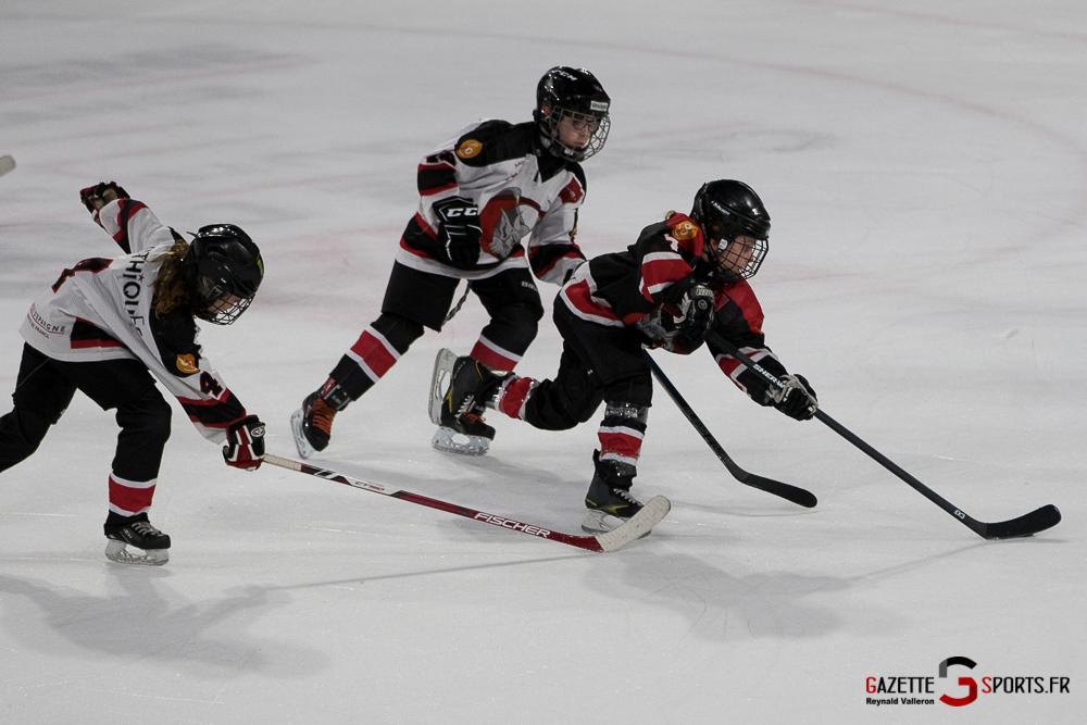 Hockey Sur Glace Mini Legendes (reynald Valleron) (9)