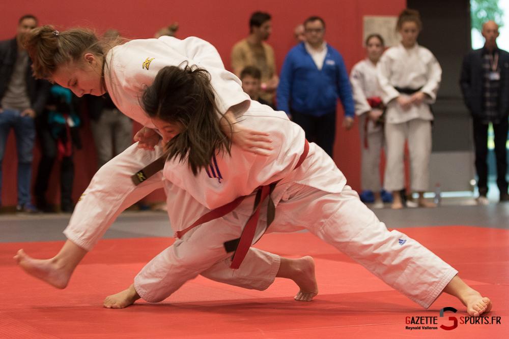 Judo (feminin) (reynald Valleron) (24)