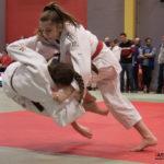 Judo (feminin) (reynald Valleron) (8)